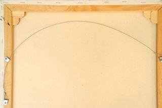 Schilderij ophangen met draad-systeem